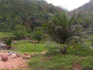 BURUNDI 2013 353