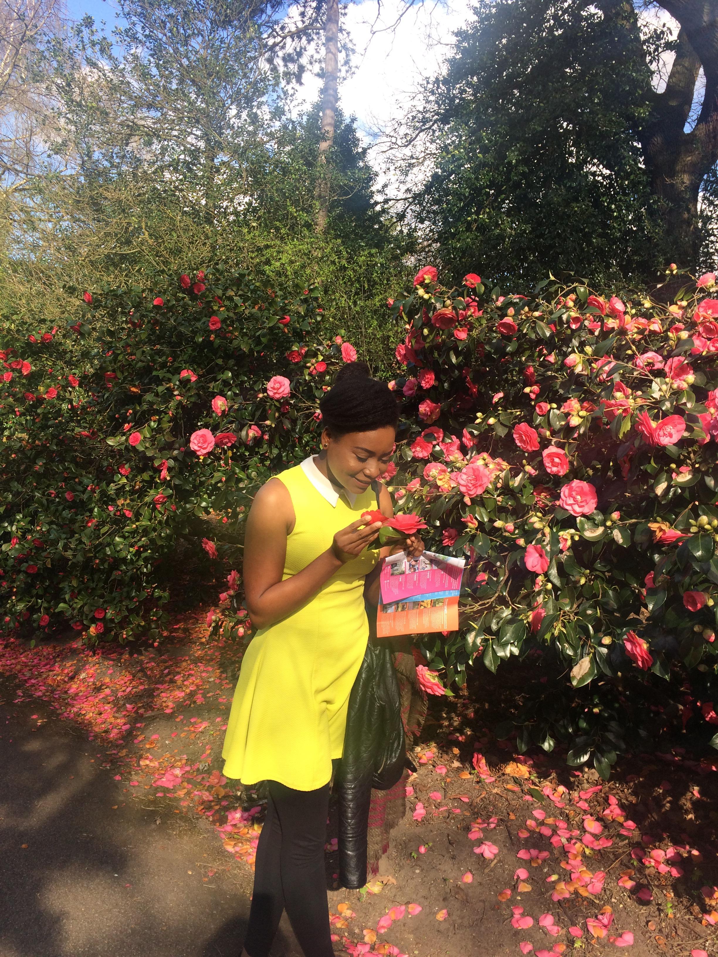London Series – Part 2, Kew Gardens – africanwildflower